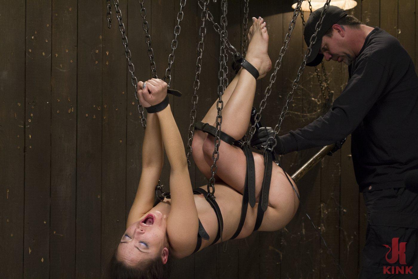 Device bondage pussy hook