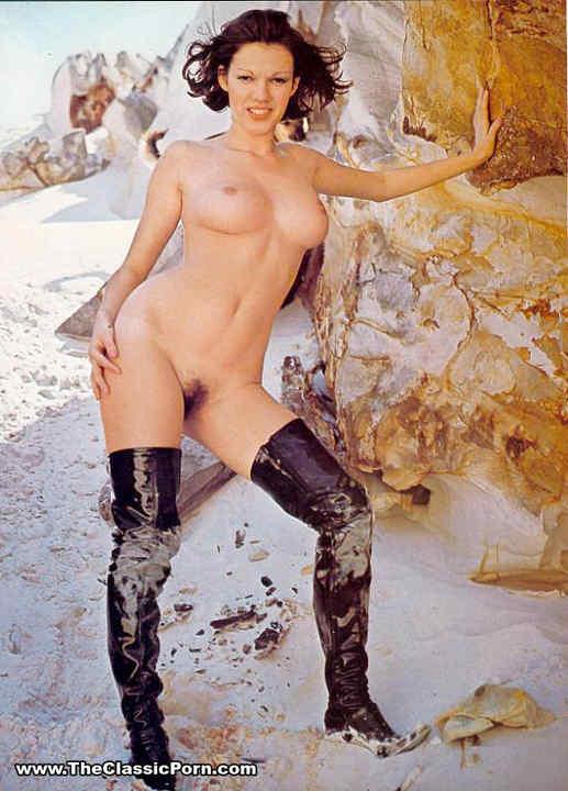 Brigitte lahaie porn