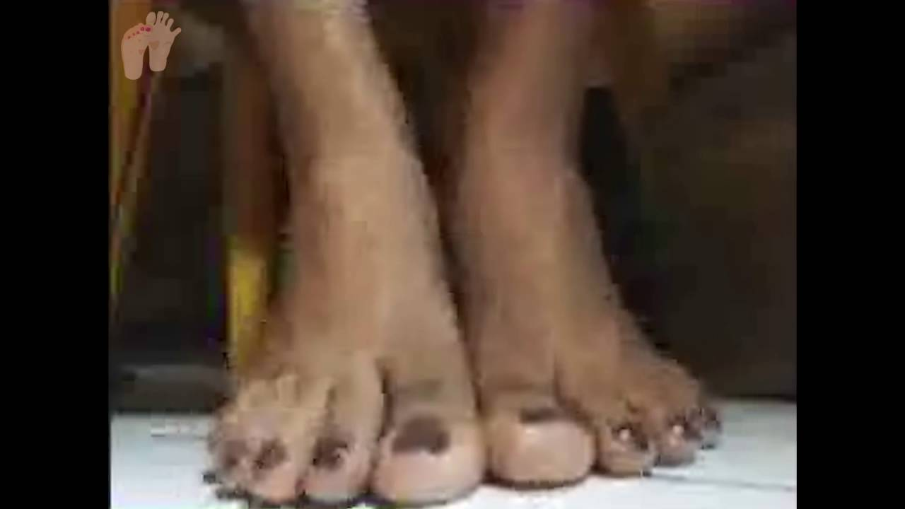 Asian bare feet ladyboy