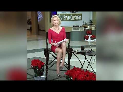 Fox new upskirt megyn kelly