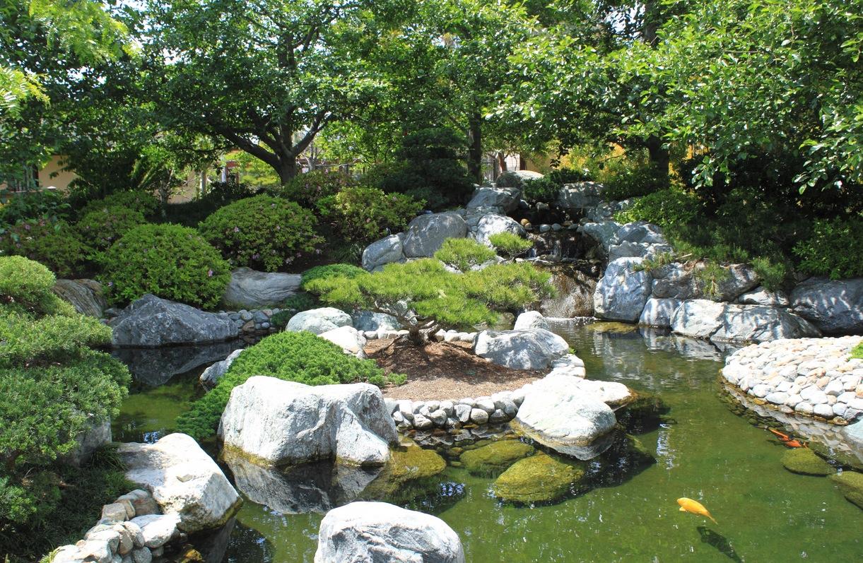 Japanese garden with koi pond
