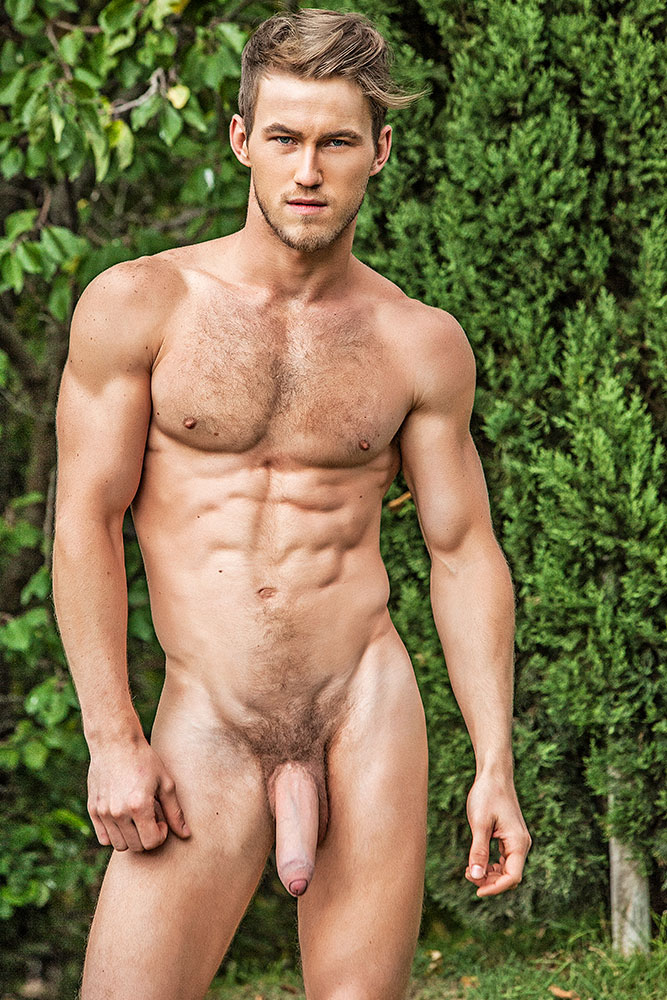 Hot female bodybuilders nude