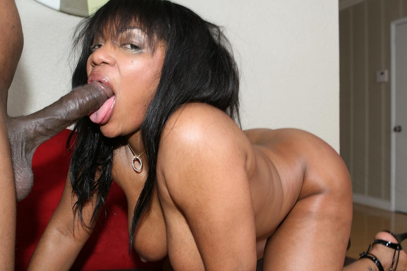 Ebony porn star janet jacme