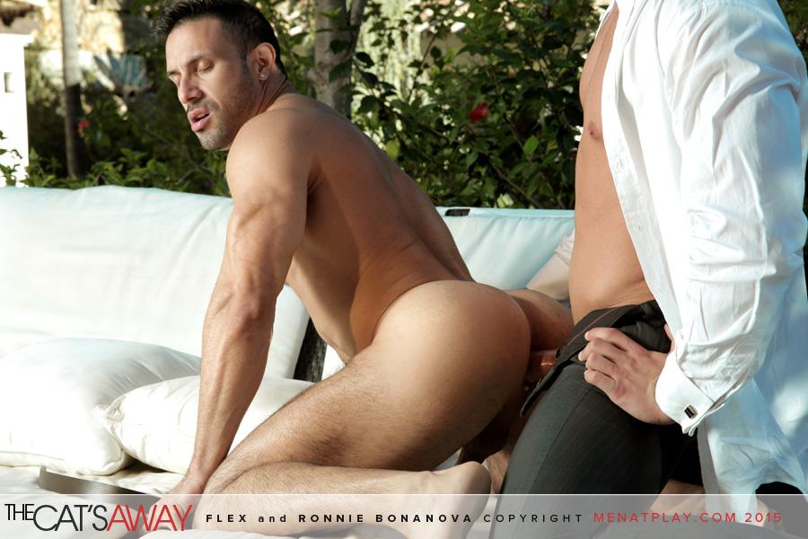 Flex and ronnie gay porn