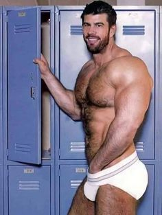 muscle atlas Hairy zeb