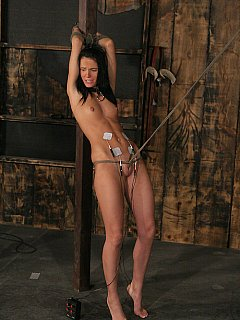 dark bondage Jennifer