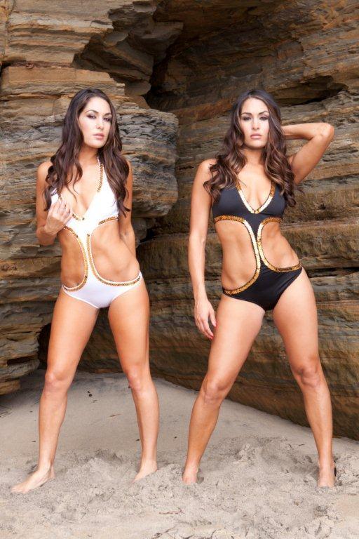 Wwe bella twins bikini